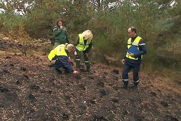 Dourbies (Gard) - la cellule de recherche des causes et des circonstances incendie enquête et autopsie une zone de 7 hectares brûlée par un feu 5 jours auparavant - août 2017.