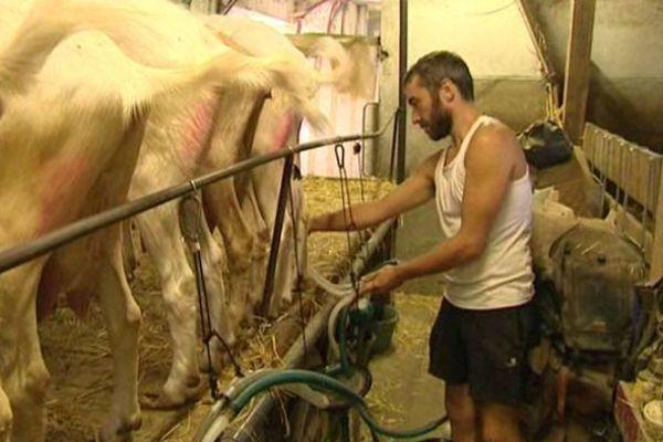 Le woofing se développe notamment sur les exploitations d'agriculture biologique.
