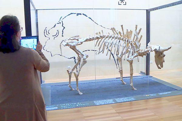 En compagnie de la guide-conférencière vous partez à la visite des principales pièces du musée national