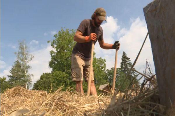 Certains choisissent le woofing pour apprendre des techniques agricoles.