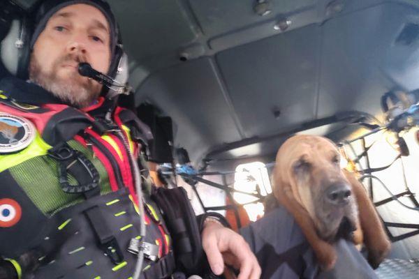 Happle avec l'adjudant Robin David. Le chien de Saint-Hubert peut suivre une piste dans tous les milieux, végétation dense comme en Haute montagne.