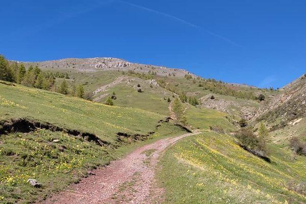 Un sentier de randonnée près de Valberg. L'arrière pays devrait être pris d'assaut cet été.