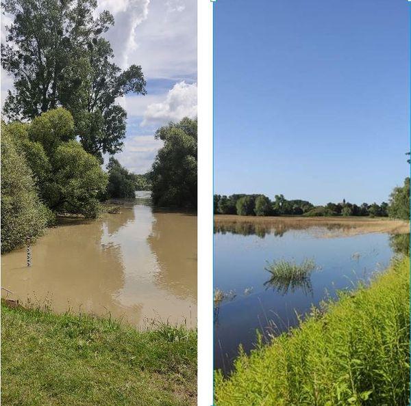 A gauche, la digue des hautes eaux à Lauterboug, à droite la réserve naturelle du delta de la Sauer à Munchhausen. Deux photos prises en juillet 2021 et dans les deux cas, le niveau de l'eau est beaucoup plus haut qu'à l'accoutumée
