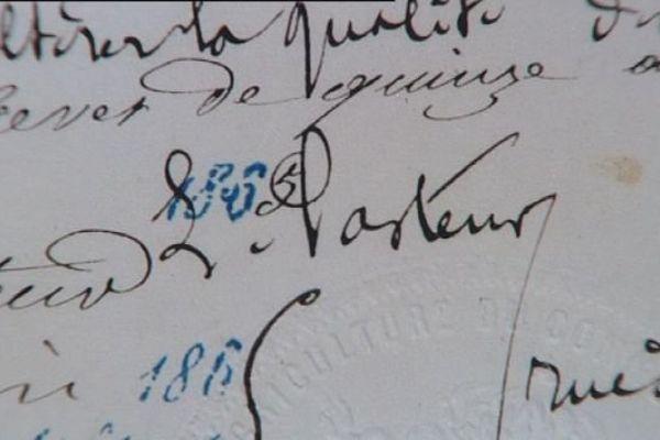 Les archives Pasteur