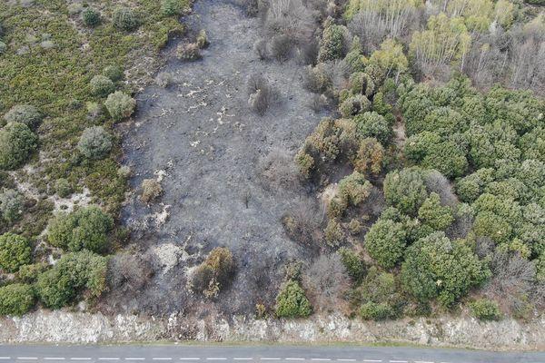 8000 m2 incendiés sur le commune de Ventalon en Cévennes