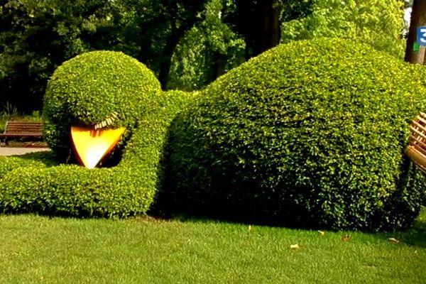 Et revoilà le poussin de Ponti au Jardin des Plantes de Nantes