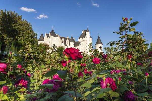 Le château du Rivau et ses rosiers.