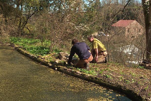 Près d'un bassin, des bénévoles s'interrogent sur la fonction d'une structure hydraulique construite au début du 20ème siècle.