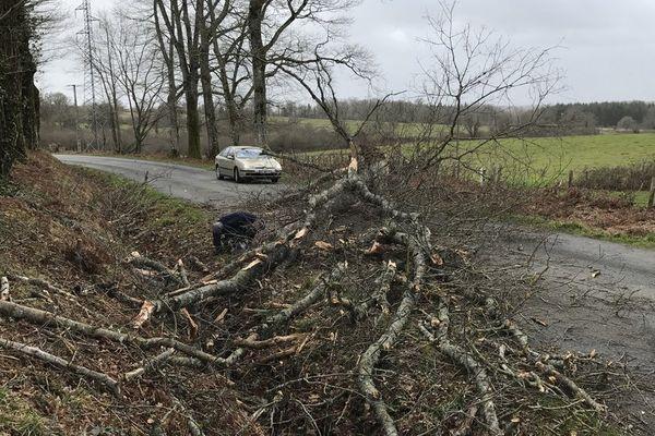 Arbres couchés sur la route : D3 coupée entre Cieux et Oradour-sur-Glane