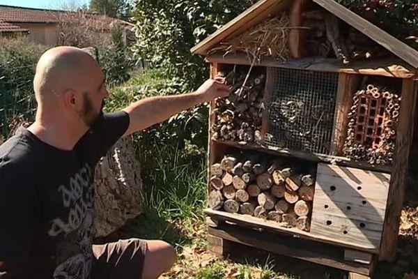Une maison pour les insectes, et un projet de maison encore plus écologique pour la famille