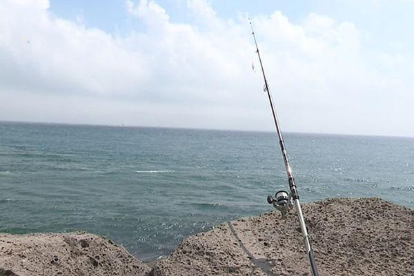 Les pêcheurs ont plus de mal à trouver du poisson.