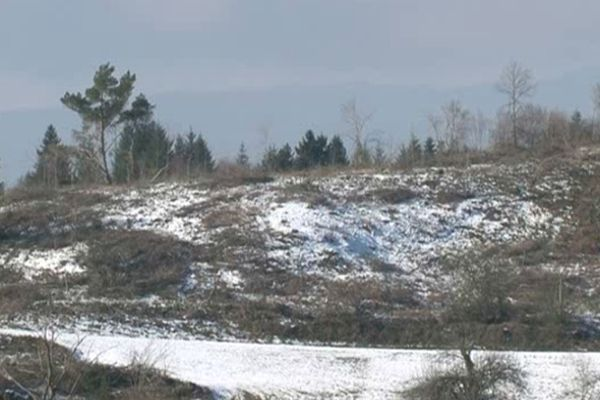 Coupe rase sur le plateau de Millevaches ( commune de Nedde)