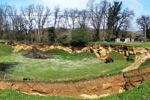 Sultan est isolé dans un pré après un affaissement de terrain. 18/03/21
