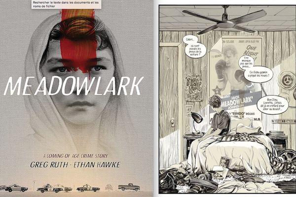 Meadowlark, de Greg Ruth et Ethan Hawke. Robinson.