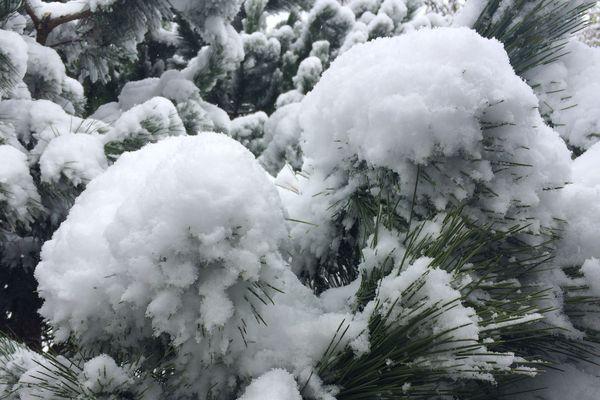 Pendant 24 heures, la neige va être très présente dans le sud de la région.
