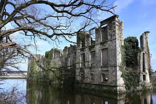 Les ruines du château de l'Etenduère aux  Herbiers, en Vendée
