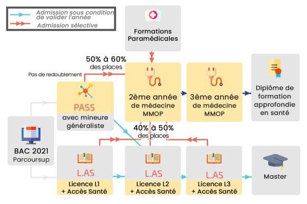 Les scénarios pour intégrer la 2e année d'études médicales.