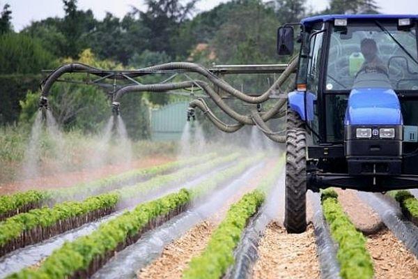 L'exposition des Français aux pesticides atteint des niveaux très élevés : c'est ce qu'indique une étude de 'Institut national de veille sanitaire (INVS) rendue publique lundi 29 avril 2013
