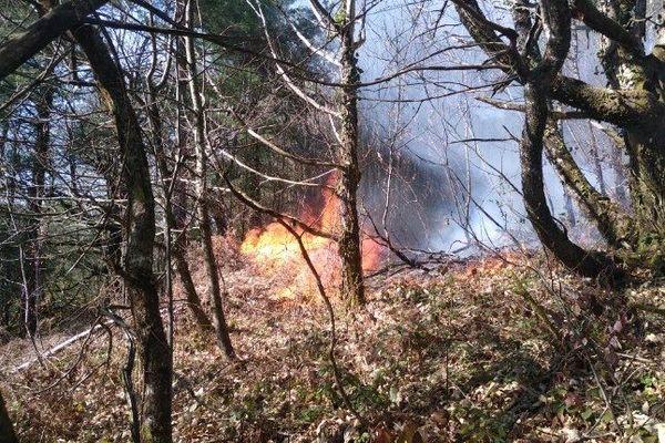 Sans doute parti d'un écobuage mal maîtrisé, ou d'un brûlage de déchets verts, le feu de Bassignac-le-Bas a mobilisé près de 50 pompiers !