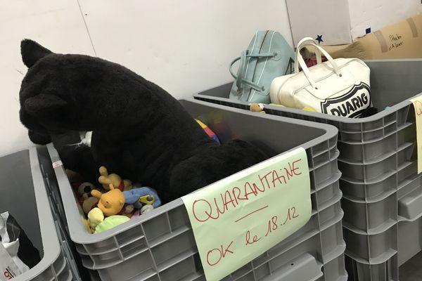 Les jouets passent d'abord par une quarantaine sanitaire de 8 à 10 jours.