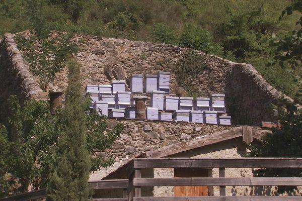 Ca d'arbinée : une maison des abeilles à La Brigue (06)