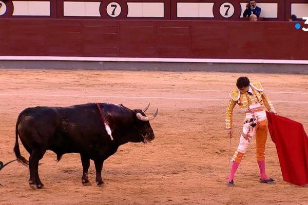 """Roca Rey, le """"roi"""" de la saison, a triomphé à Madrid le 22 mai dernier. Jeudi prochain, 18 juillet, il est à l'affiche à Mont-de-Marsan…"""
