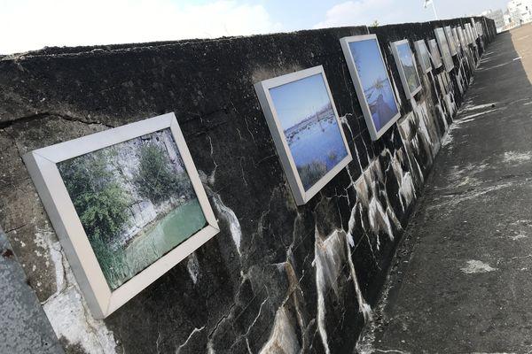 Entre le Jardin des Euphorbes et la forêt de trembles, une expo photo à ciel ouvert qui vous emmène ailleurs.
