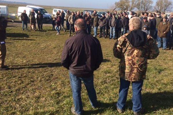 Les chasseurs contestent la décision du Conseil d'État leur interdisant de chasser les oies grises en ce moment