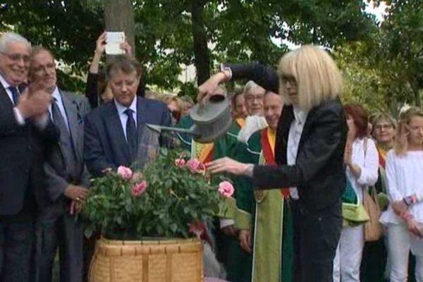 Mireille Darc en train de baptiser au champagne la rose qui porte son nom.