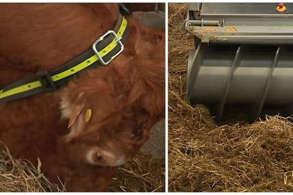 Colliers connectés, machines automatisées : toutes les dernières innovations ont été présentées aux éleveurs.