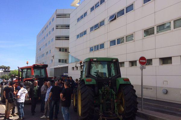 Rassemblement du Syndicat des Jeunes Agriculteurs mardi 12 mai devant le commissariat de Bastia.