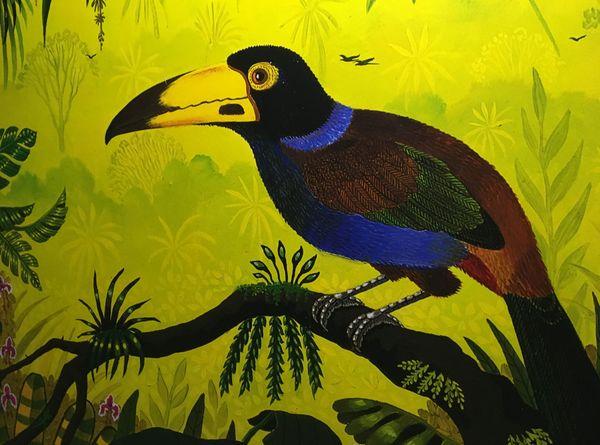 Un bel oiseau signé Alain Thomas