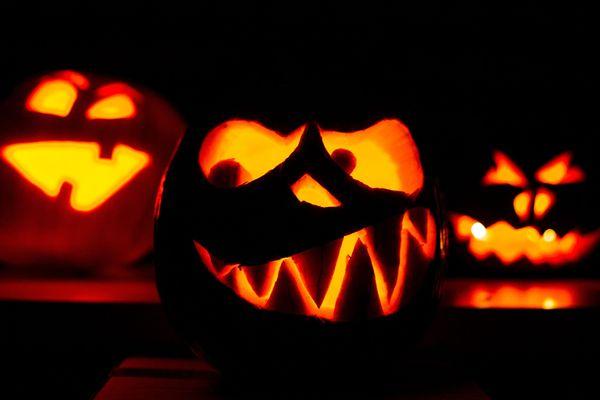 Des citrouilles creusées et illuminées pour Halloween - Photo d'illustration