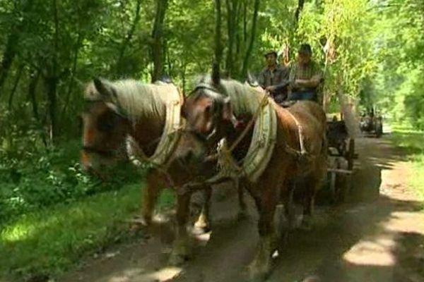 Le cortège a fait une dizaine de haltes dans les villages au bord du Rhin