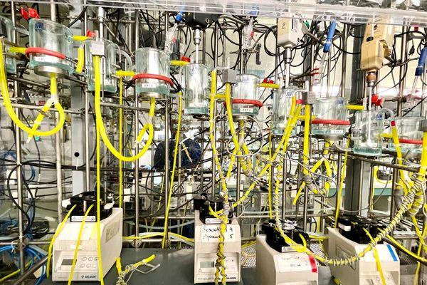 A Bessines-sur-Gartempe, chez Orano, des essais sont en cours pour trouver le meilleur procédé pour recycler les batteries des véhicules électriques