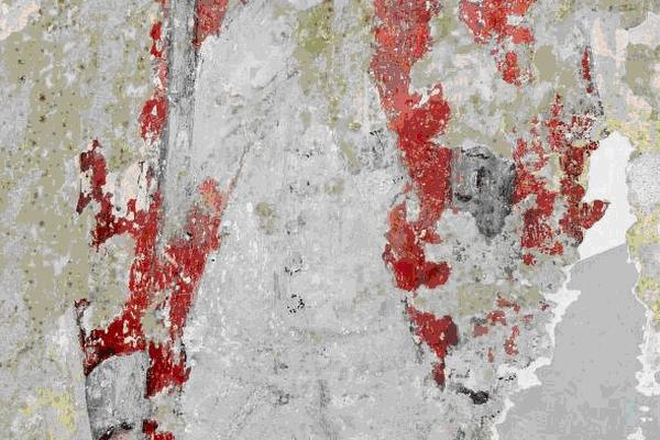 La « british red jacket » de drap rouge à parements bleus (col et manches) telle qu'elle a été découverte