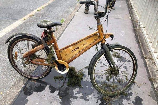 """Un vélo retiré d'un plan d'eau grâce à la """"pêche à l'aimant"""" une pratique en plein développement"""