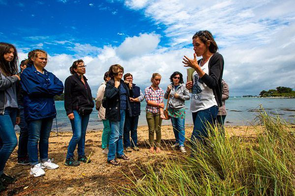 Mélanie Chouan est guide nature dans le golfe du Morbihan