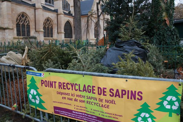 Certains points de recyclage de sapin sont ouverts 24h sur 24.