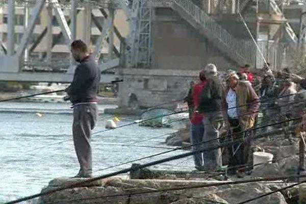 La tradition de la pêche à la daurade est en danger à Sète – 20 octobre 2015