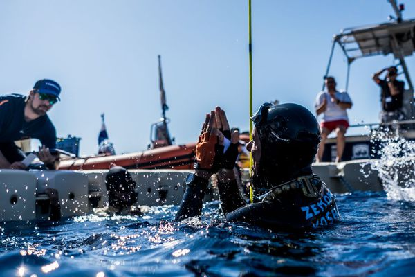 Le moine apnéiste, de retour à la surface de la Méditerranée ce lundi.