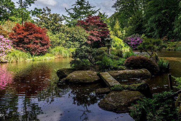 Un parc qui vous invite à faire un tour du monde des essences florales et botaniques.