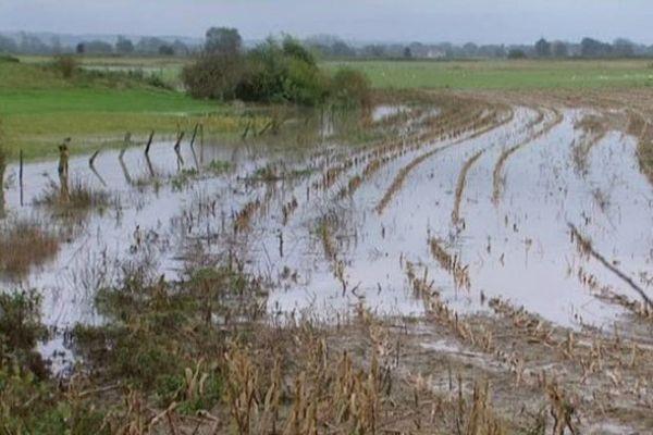Trop d'eau dans les Bas-Champs