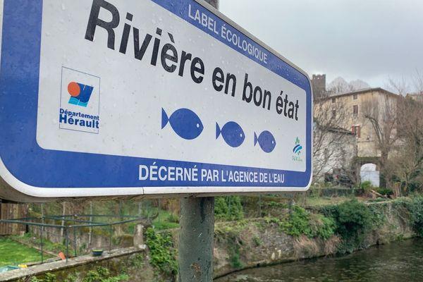 """Près de sa source, à Saint-Pons-de-Thomières, le Jaur est classé """"réserve de pêche"""""""