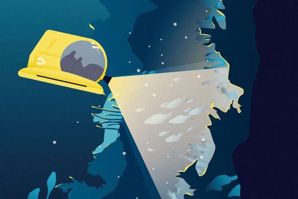 Les canyons sous-marins peuvent atteindre 4.000 mètres de profondeur.