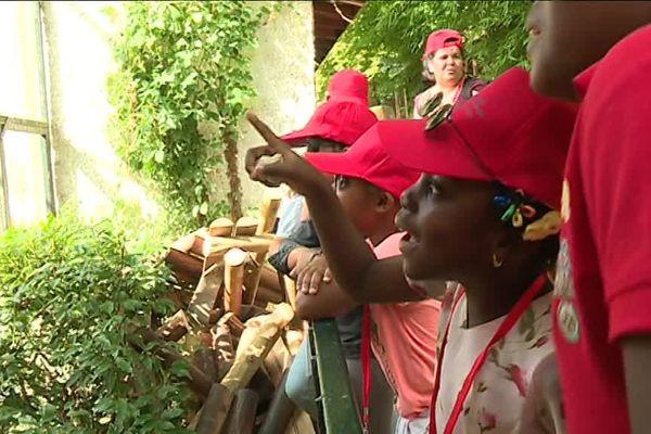 Ce petit groupe de jeunes à casquette rouge sont des enfants de la région.