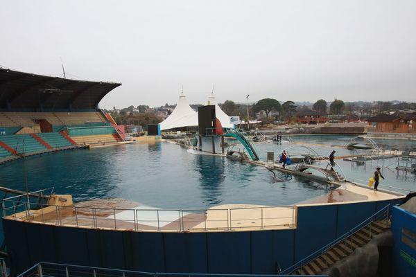Le bassin des orques le 14 janvier 2016.