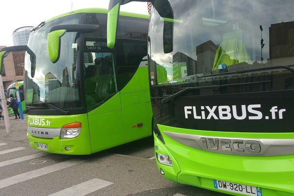 Les Flixbus à leur arrivée à Lyon.