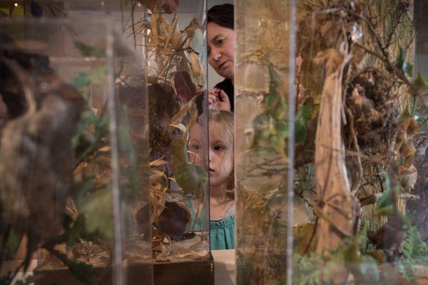 Les musées de Clermont-Ferrand multiplient les animations pour les enfants pendant les vacances de Noël.