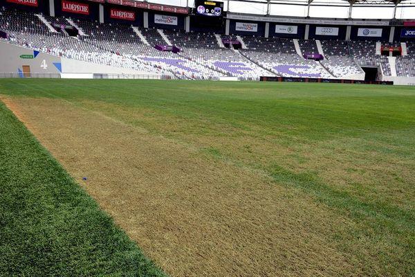 La pelouse du Stadium souffre à cause d'un champignon- Toulouse septembre 2016